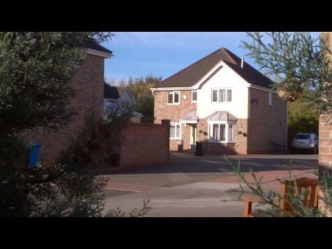 West Hull. Garden. Professionals VIDEO Main Photo
