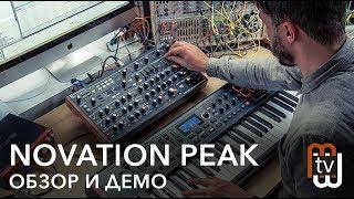 Novation Peak - гибридный синтезатор (общий обзор)