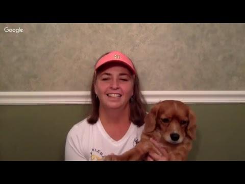 Pickleball Game Analysis: Stephanie Lane