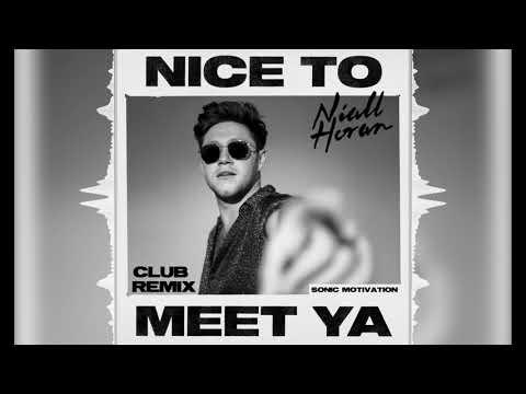 Niall Horan - Nice To Meet Ya (Club Remix)