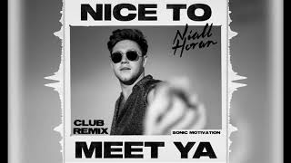 Niall Horan - Nice to Meet Ya (Club Remix)