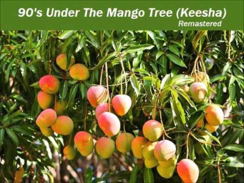 Dj Manoy John - 90's Under The Mango Tree (Keesha) Remastered