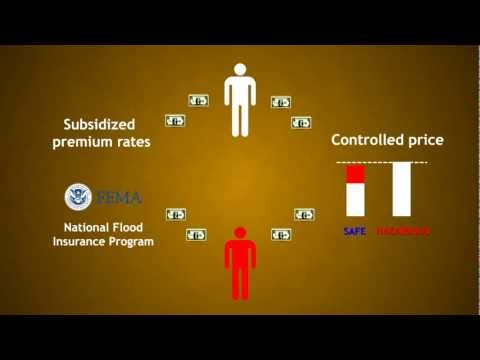 Economics of natural disasters: Moral hazard, government intervention and insurance