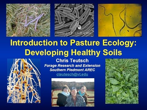 Introduction to Pasture Ecology-2015