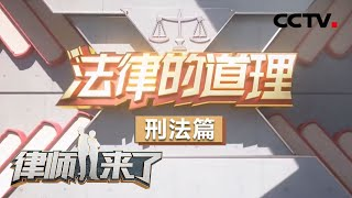 《律师来了》 20200516 法律的道理 刑法篇  CCTV社会与法