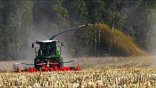 Wielkie koszenie kukurydzy na dwie sieczkarnie ☆ Fendt Katana 65 & Claas Jaguar 940
