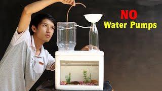 Building an Awesome Aquarium w…