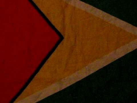 My Flag [Guyana]