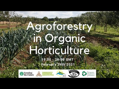 Agroforestry in organic horticulture