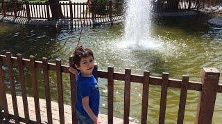 Kuğulu parkta eğlence zamanı