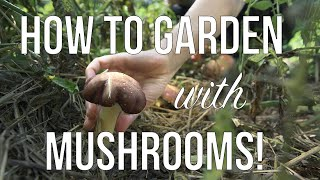 Gardening and Growing Mushrooms | How to Grow Mushrooms in your Annual or Permaculture Garden