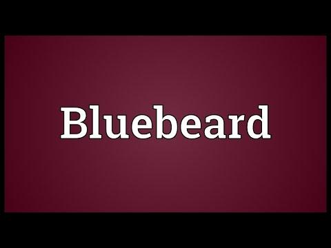 Bluebeard Meaning