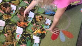 Полная коллекция лягушек Maxi