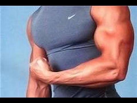 Ejercicios ganar masa muscular en brazos
