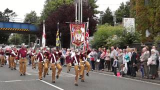 Ballymena Twelfth Parade 2014 - Galgorm road