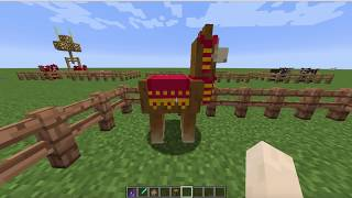 How to Ride aฑd Tame a Llama! ~ How to Tame