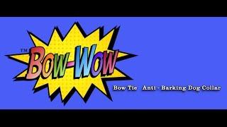 Bowwow   No Bark Dog Collar