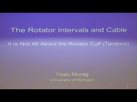 The Rotator Intervals and Cable - Yoav MORAG