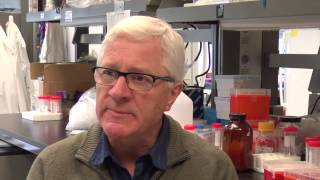 Princess Margaret Cancer Centre scientists and surgeons have discovered a new approach to treating colorectal cancer  - by disarming the gene that drives self-renewal in stem cells that are the root cause of disease, resistance to treatment and relapse
