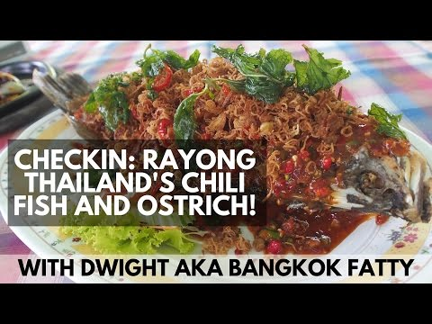 Travel Checkin: Rayong, Thailand's Amazing Chili Covered Fish and Ostrich Hot Plate