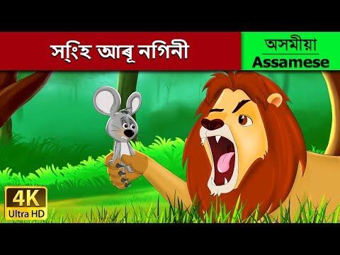 সি্ংহ আৰূ নিগনী | Lion And The Mouse In Assamese | Assamese Story | Assamese Fairy Tales
