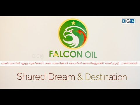 FALCON OIL project .