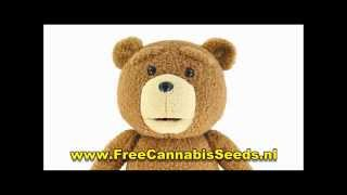 Ted 2 - A Message From Ted - Unseen Footage