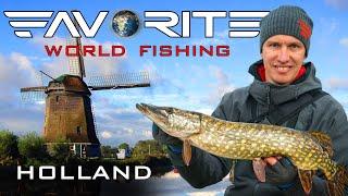 Щука судак и МНОГО ОКУНЯ на спиннинг Где искать рыбу в Голландии Favorite World Fishing