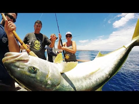 Cribbs Jigs Sponsored Trip on the Amigo • Ventura Sportfishing
