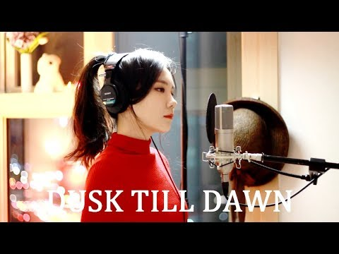 ZAYN - Dusk Till Dawn ft. Sia ( cover by J )