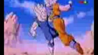 VIDEO Goku VS Vegeta.3gp