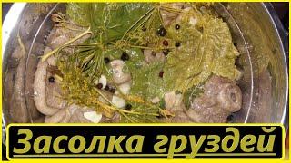 Засолка груздей двумя способами. выпуск № 31.