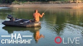 Рыбалка на спиннинг в прямом эфире Озеро Х