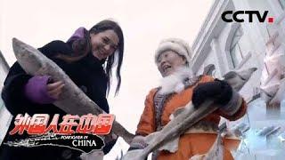 《外国人在中国》 20190519 安娜的东北情缘| CCTV中文国际