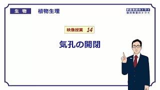 【高校生物】 植物生理14 気孔の開閉(15分)