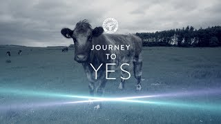 Journey to Yes #14 Farming