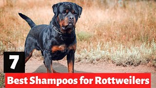 7 Best Dog Shampoos And Conditioners For Rottweilers