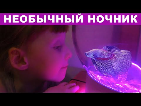 Ночник. Как из обычного АКВАРИУМА сделать красивый светильник для ребенка | Lamp for a child DIY. 0+