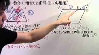 大相似形テレビ - JapaneseClass...