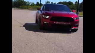 Ecoboost mustang burnout