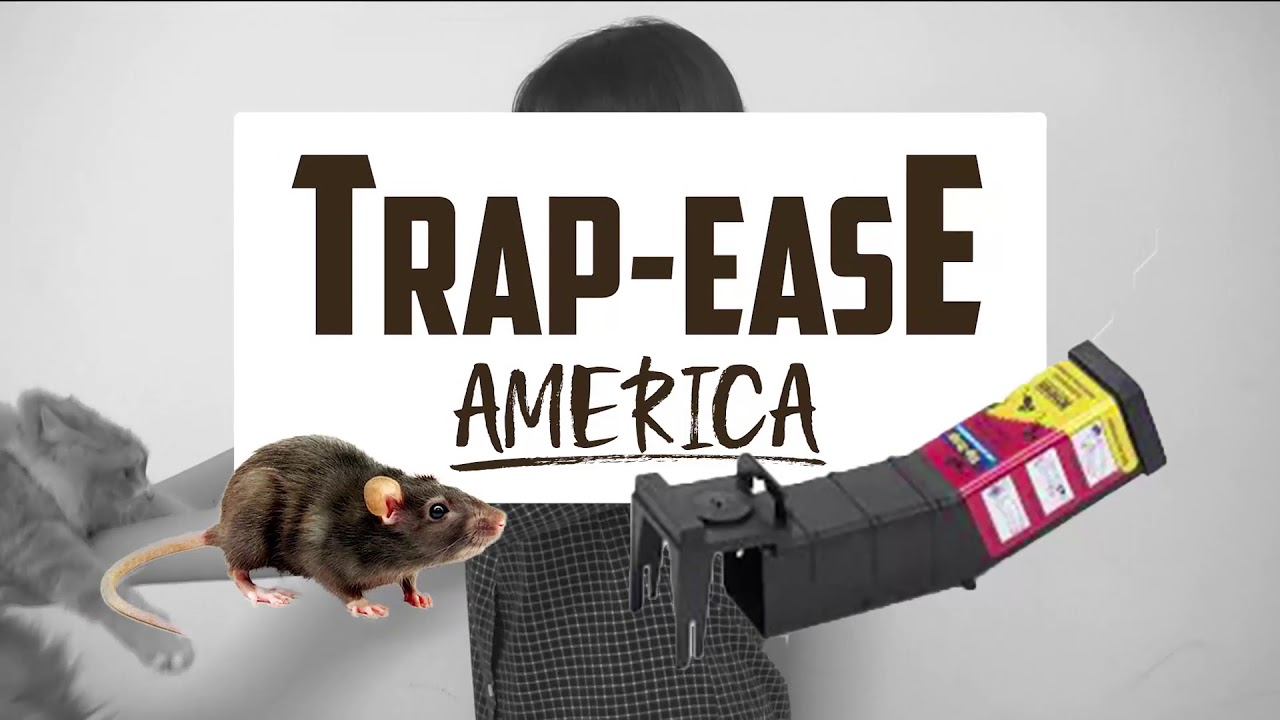 marketing and trap ease Trap-ease utilizes plastic that is generally less costly than wood, thin steel metals and springs which compose the traditional mousetrap once trap-ease has firmly established its name in the market by gradually increasing market share, prices may be increased eventually, but not as of the moment.