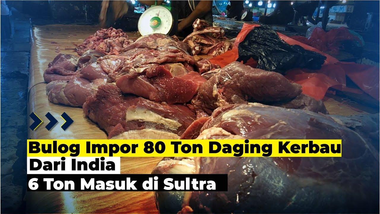 Bulog Impor 80 Ton Daging Kerbau Dari India Untuk Ramadan