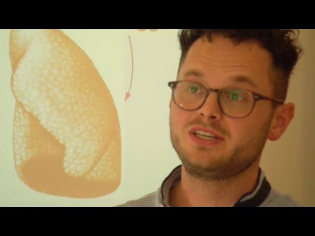 Franz Stieberitz | Lehrkraft an der Medizinischen Schule des CTK