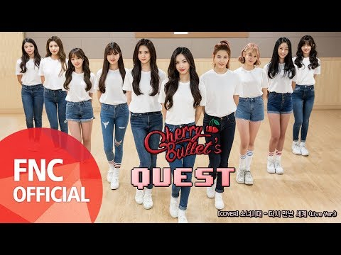 Cherry Bullet Cover Girls Generation Into The New World