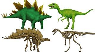 Dinosaur Puzzle & Dig Up Screen: 2 Dinosaur Skeletons - IOS Gameplay  Newbie Gaming