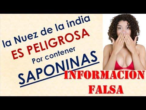 Nuez de la india es PELIGROSA por contener SAPONINAS