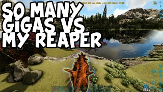 My Reaper vs 10 Gigas! Crazy PVP - Ark Survival Evolved - Official Small Tribes