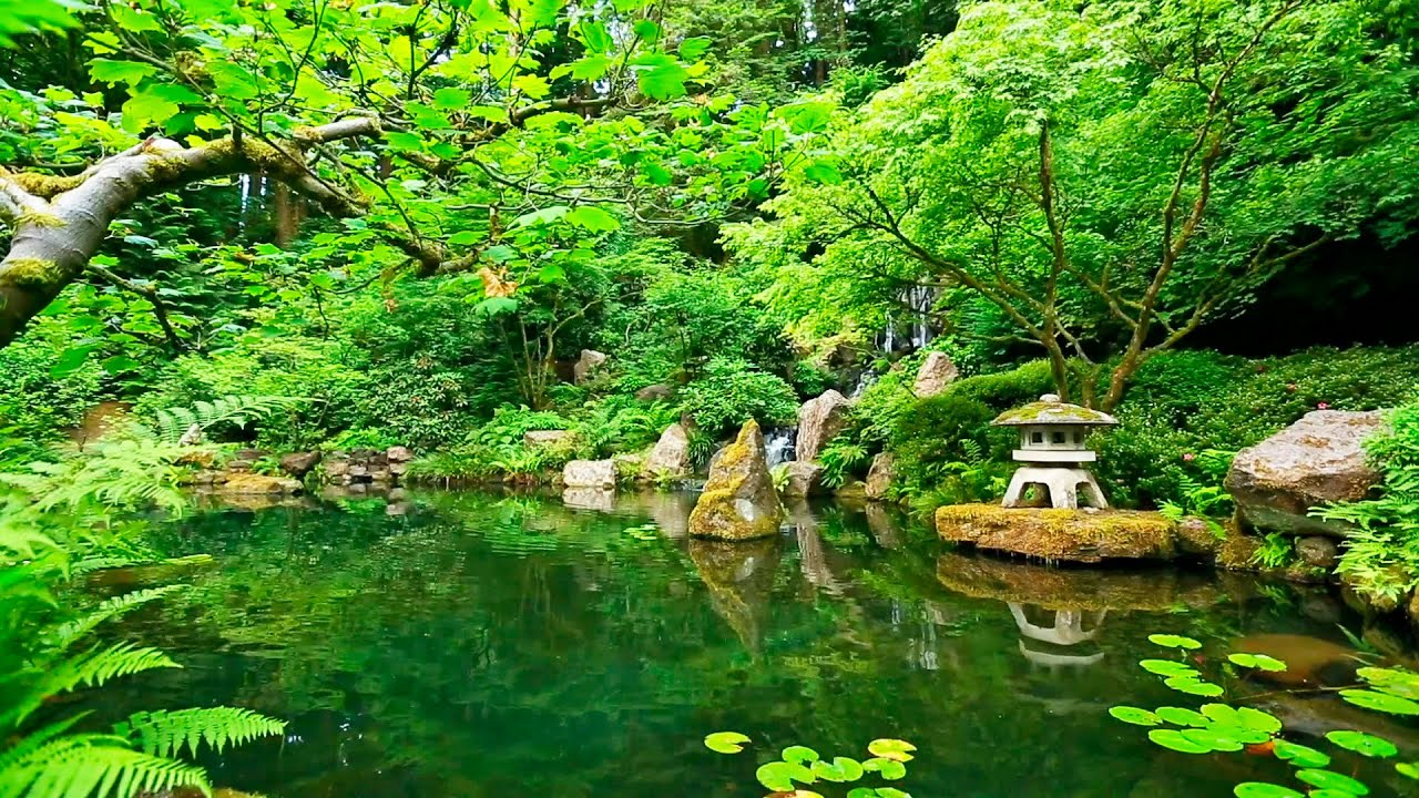 deep sleep music and nature sounds zen garden hd relaxing youtube. Black Bedroom Furniture Sets. Home Design Ideas