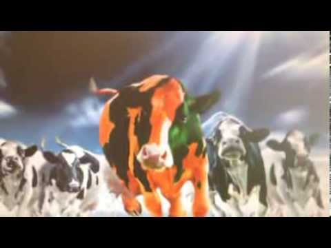 Dairy Farming of the Future