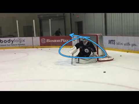 NHL GOALTENDER RVH GLOVE SIDE OPTIONS by Pasco Valana